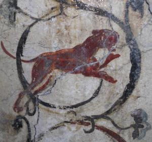 <span>Roma, Domus Aurea, Criptoportico 19</span><i>→</i>